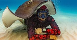 从与鲨共舞到被鱼群吞噬 这些刺激的潜水奇遇你经历过吗?