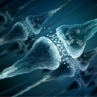 记忆是啥?能吃吗?小胶质细胞:能!
