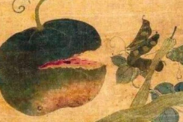 """老北京""""吃瓜群众""""的夏日生活"""