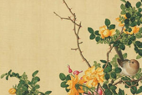 月季芬芳四百年 北京市花的前世今生